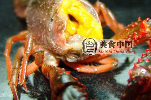 麻辣小龙虾做法的详细图解