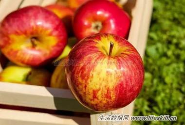 你知道吗?苹果不可以和青菜放在一起!