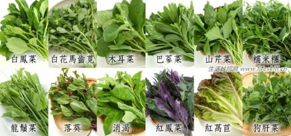 野菜纯天然有营养,你知道怎么吃吗?